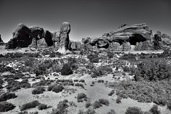 Suddenly I Saw the Cold and Rook-Delighting Heaven (Black & White, Arches National Park) (thor_mark ) Tags: archesnationalpark azimuth329 blackwhite blueskies butte canvas canyonlands capturenx2edited centralcanyonlands colorefexpro coloradoplateau day6 desert desertlandscape desertmountainlandscape desertplantlife doublearch doublearchtrail elephantbutte highdesert imagecaptureinmonochrome intermountainwest landscape largebushes layersofrock lookingnnw nature nikond800e outside paradeofelephants portfolio project365 rockformations sunny trees utahhighdesert utahnationalparks2017 ut unitedstates