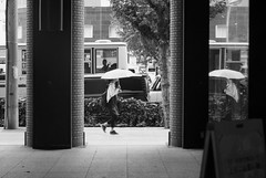 July 27, 2019_21 (Satoshi Kondo) Tags: bw bnw blackandwhite blackandwhitephotography blackandwhitephoto bnwphoto bwphoto bnwphotography bwphotography blackandwhitepoto blackandwhitepotography monochrome leica leicam3 leicaphoto leicaworld elmar90mm filmphotography filmphoto filmcamera film filmpoto filmpotography flimphotography street streetphoto streetsnap streetphotography snap