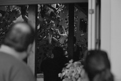July 27, 2019_15 (Satoshi Kondo) Tags: bw bnw blackandwhite blackandwhitephotography blackandwhitephoto bnwphoto bwphoto bnwphotography bwphotography blackandwhitepoto blackandwhitepotography monochrome leica leicam3 leicaphoto leicaworld elmar90mm filmphotography filmphoto filmcamera film filmpoto filmpotography flimphotography street streetphoto streetsnap streetphotography snap
