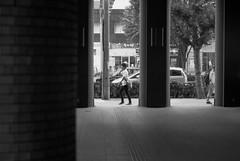 July 27, 2019_18 (Satoshi Kondo) Tags: bw bnw blackandwhite blackandwhitephotography blackandwhitephoto bnwphoto bwphoto bnwphotography bwphotography blackandwhitepoto blackandwhitepotography monochrome leica leicam3 leicaphoto leicaworld elmar90mm filmphotography filmphoto filmcamera film filmpoto filmpotography flimphotography street streetphoto streetsnap streetphotography snap