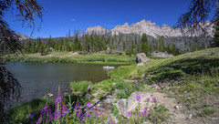 _24A7027-HDR-Edit (scepdoll) Tags: findyourpark dubois summer togwoteepass wilderness windriverlakepicnicsite wyoming landscape outdoors pinnacles