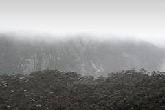 The mist descends (simoneandginko) Tags: grampians victoria australia fog mist trees mountains haze forest