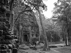 Temples de Sombor Prey Kuk, Kompong Thom, Cambodge, août 2019. Sombor Prey Kuk temples, Kompong Thom, Cambodia, August 2019. https://fr.m.wikipedia.org/wiki/Sambor_Prei_Kukhttps://en.m.wikipedia.org/wiki/Sambor_Prei_Kuk (vdareau) Tags: unescoworldheritage blackandwhitephotography photographienoiretblanc blackandwhite noiretblanc temple somborpreykuh kompongthom cambodia cambodge asiedusudest southeastasia asia asie