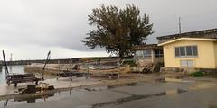 海野漁港 セリ市場前 (8pl) Tags: maison bateau port mer maritime umino japon okinawa arbre jetée phare reflets barreaux