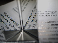 prisma (Elisabeth patchwork) Tags: prisma lightrays lines geometry text printedwords