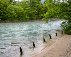 Kamikochi Azusa River (shinichiro*) Tags: 松本市 長野県 日本 20190706dsc8080 2019 crazyshin nikonz6 z6 nikkorz2470mmf4s july summer 大正池 kamikochi nagano japan jp autoisospeedupper3200 48509845217 5717859 201908gettyuploadesp