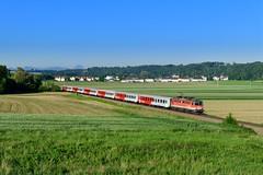 "1142 598 ""ÖBB"" Nettingsdorf (Matthias Greinwald) Tags: 1142 rex öbb österreichische bundesbahn personenzug zug 598 nettingsdorf"