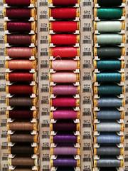 So many colours 222/365 2019