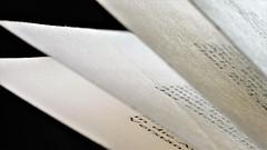 An open book (norbert.wegner) Tags: macromondays paper book words macro printedword