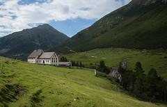 ALP SERLAS, LA PUNT CHAMUES-CH (Toni_V) Tags: m2401451 rangefinder digitalrangefinder messsucher leicam leica mp typ240 type240 28mm elmaritm12828asph hiking wanderung randonnée escursione graubünden grisons grischun alps alpen engiadinota oberengadin engadin alpserlas alpserlaslapuntchamuesch valchamuera godgiavagl landscape landschaft switzerland schweiz suisse svizzera svizra europe maiensäss ©toniv 2019 190810