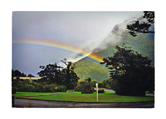 Rainbow at close range (jasoux) Tags: milfordsound nz newzealand fiordland rainbow mountain wilderness outdoors fiordlandnationalpark trees analogue nature trip