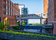 1 Sky Bridges (Singing With Light) Tags: 2019 22nd a7iii mirrorless ny nyc singingwithlight sonya7iii wednesdaywalk mthehighline may morning onthewaytowork photography singingwithlightphotography sony