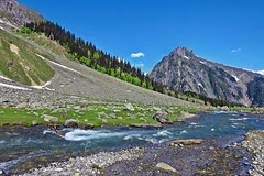 The melody of nature !! (Lopamudra !) Tags: lopamudra lopamudrabarman lopa landscape kashmir kasmir river stream twajiwas thajiwas thajibas glacier glacial mountain mountains himalaya himalayas highaltitude sonmarg jk india peace nature musical melody tree trees water waterscape colour color colours colourful cold beauty beautiful picturesque