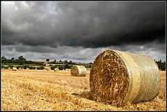 I know where Bill's Mother lives........... (Jason 87030) Tags: clouds weather rain northants northamptonshire braunstion farming field straw hay wheat bale crop harvest uk countryside england english scene