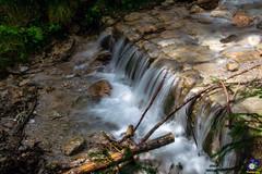 Watervalletje (carolienvanhilten) Tags: lofer astbergbahn koe austria oesterreich oostenrijk tirol fieberbrunn waterval bergen mountains weer mier ant