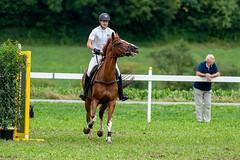 A9907475_s (AndiP66) Tags: stephanhellmüller oberkirch luzern nevada springkonkurrenz seon rvhallwil 11august2019 egliswil august 2019 pferdesporttage springen pferd horse schweiz switzerland kantonaargau cantonaargau concours wettbewerb horsejumping equestrian sports springreiten pferdespringen pferdesport sport sony alpha sonyalpha 99markii 99ii 99m2 a99ii ilca99m2 slta99ii sony70400mm f456 sony70400mmf456gssmii sal70400g2 amount andreaspeters
