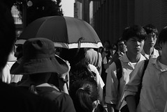 August 5, 2019_16 (Satoshi Kondo) Tags: bw bnw blackandwhite blackandwhitephotography blackandwhitephoto bnwphoto bwphoto bnwphotography bwphotography blackandwhitepoto blackandwhitepotography monochrome leica leicam3 leicaphoto leicaworld elmar90mm filmphotography filmphoto filmcamera film filmpoto filmpotography flimphotography kodak 400tx