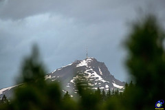 Slecht weer op komst (carolienvanhilten) Tags: lofer astbergbahn koe austria oesterreich oostenrijk tirol fieberbrunn waterval bergen mountains weer mier ant
