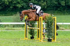 A9907485_s (AndiP66) Tags: springkonkurrenz seon rvhallwil 11august2019 egliswil august 2019 pferdesporttage springen pferd horse schweiz switzerland kantonaargau cantonaargau concours wettbewerb horsejumping equestrian sports springreiten pferdespringen pferdesport sport sony alpha sonyalpha 99markii 99ii 99m2 a99ii ilca99m2 slta99ii sony70400mm f456 sony70400mmf456gssmii sal70400g2 amount andreaspeters