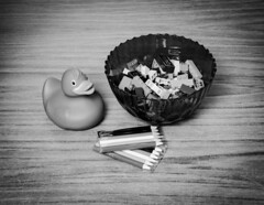 (Chris Hester) Tags: 13p2 duck pink bowl lego