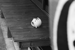 August 5, 2019_8 (Satoshi Kondo) Tags: bw bnw blackandwhite blackandwhitephotography blackandwhitephoto bnwphoto bwphoto bnwphotography bwphotography blackandwhitepoto blackandwhitepotography monochrome leica leicam3 leicaphoto leicaworld elmar90mm filmphotography filmphoto filmcamera film filmpoto filmpotography flimphotography kodak 400tx