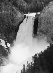Yellowstone River, Lower Falls from Lookout Point (LarsHolte) Tags: pentax 645 pentax645 645n 6x45 smcpentaxfa 200mm f40 120 film 120film analog analogue kosmo foto mono 100iso caffenolc mediumformat blackandwhite classicblackwhite bw monochrome filmforever filmphotography ishootfilm larsholte homeprocessing usa yellowstone nationalpark wyoming landscape river waterfall
