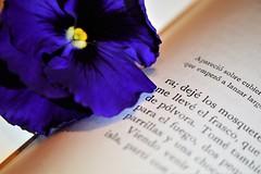 Bookmarker (maríaelenalópez) Tags: macromondays printedwords