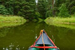 10.8.2019, 11:53 am (andreassimon) Tags: wald waldviertel boot österreich ottenstein kanu canoe forest