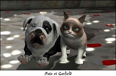 Pato & Garfield (sully kanya) Tags: dogs cats chien chat rezzroom secondlife cut sweety