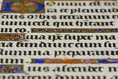 Book of Hours Text (steve_whitmarsh) Tags: macro closeup writing colour words book art macromondays printedword topic
