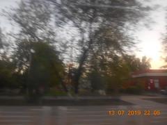 Деревья. (LUNA_HG) Tags: 2019 лето вечер тюменскаяобласть тюмень табличка