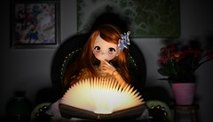 Knowledge is light ! (Real Salica) Tags: minidollfiedream mdd dollce head vinyl volks 45cm 14scale ginger book reading anime japan japanese learning kawaii