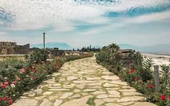 Ancient-City-Hierapolis-Turkey-7377