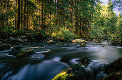Forest creek V (mabuli90) Tags: finland water creek river forest tree north karelia long exposure nature landscape summer rock light