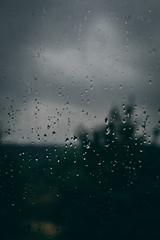 Rain (tobinyates) Tags: rain moody moodytones moodyphotography virgina teenphotography teenagephotographer canon canonphotography shotoncanon