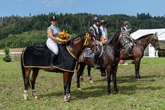 A7309112_s (AndiP66) Tags: springkonkurrenz seon rvhallwil 11august2019 egliswil august 2019 pferdesporttage springen pferd horse schweiz switzerland kantonaargau cantonaargau concours wettbewerb horsejumping equestrian sports springreiten pferdespringen pferdesport sport sony sonyalpha 7markiii 7iii 7m3 a7iii alpha ilce7m3 sonyfe70300mmf4556goss fe70300mm 70300mm f4556 emount andreaspeters