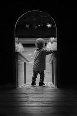 Follow the light. (adifox) Tags: blackandwhite child portrait mono light son 50mm bnw nikon
