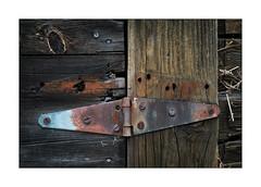 Rusty Hinge (Rick Olsen) Tags: rusty hinge wood old decay fuji fujifilm xt2 mundane banal