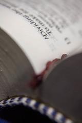 Printed Word - [MacroMonday_20190812] (Arranion) Tags: macromondays printedword book macro dof depth field depthoffield macromania word text print printed monday mondays macromonday canon 5d lens paper hmm