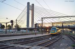 Astra Trans Carpatic - IR 15582 - 11.08.2019 (VictorSZi) Tags: romania bucharest bucuresti transport nikon nikond5300 august summer vara astra astratranscarpatic train