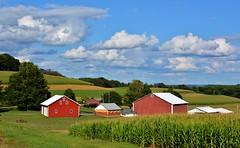 Pennsylvania Farmland. (bobchesarek) Tags: pennsylvania punxsutawney rural farmland barn farm clouds summerday bluesky