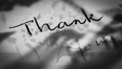 Thanks and TTFN (Greenstone Girl) Tags: writing macromondays printed word printedword