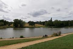 Highgate Ponds 223/365 2019