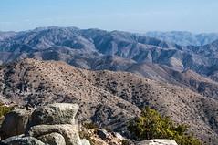 Mojave Desert, near Palm  Springs (Julie H. Ferguson (Photos by Pharos)) Tags: california travel usa sand desert palmsprings mojavedesert joshuatreenationalmonument mountains lanscape ridges rocks