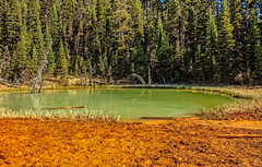 Kootenay National Park Paint Pots (http://fineartamerica.com/profiles/robert-bales.ht) Tags: canada forupload paintpot places projects scenic fgeothermal landscape mud thermal mountain national hot pot steam nature geology pool tourism beautiful geyser basin bubble mineral water tourist visitor mudpool icelandic volcanic boiling landmark sulfuric sulphur surreal dramatic bubbling sulfur mudpot geothermalarea vulcanic kootenaynationalpark red trail colorful milky slit glacial vermilionriver emerald paintpots green robertbales