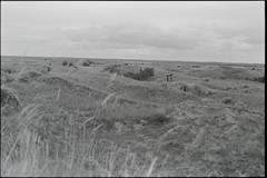SKfilm4 (DustinGinetz.Photography) Tags: fujineopanacros100 35mmfilm bw saskatchewan canoneos1v labbox d76
