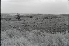 SKfilm3 (DustinGinetz.Photography) Tags: fujineopanacros100 35mmfilm bw saskatchewan canoneos1v labbox d76