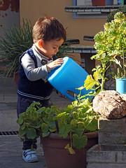 El riego a las plantas es importante. (jagar41_ Juan Antonio) Tags: nikon niños niño personas persona hijos nieto