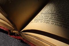 Printed word (LSydney) Tags: macromondays printedword book macro