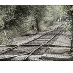 Rails to North Bend thumbnail